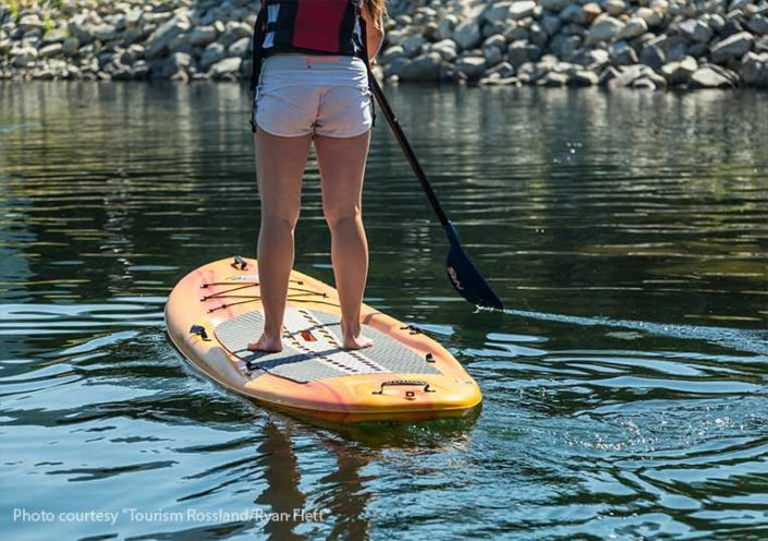 Book Now Nelson Paddleboard Amp Kayak Rentals